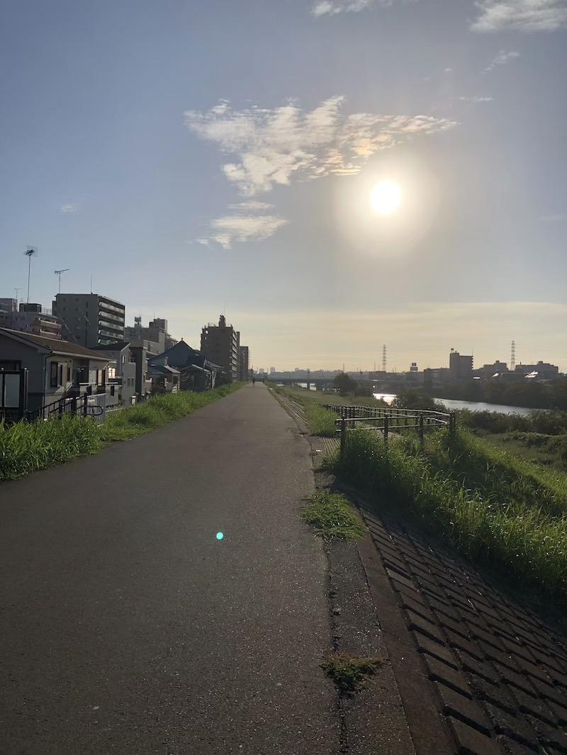 朝ランの川沿いの景色